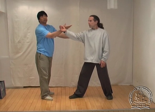 Yin Style Babua Fighting Methods - screenshot 1